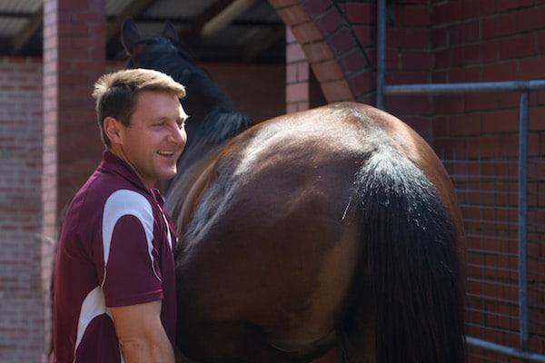 Dr Peter Harding, Ascot Equine Veterinarians, Ascot Equine vet, Performance horse, Racehorse