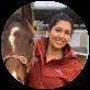 Ascot Equine Veterinarians, Ascot Equine vet, Performance horse, Racehorse
